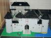 Burg Vondern_3